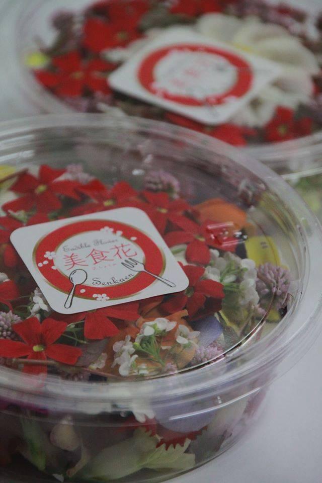 美食花が有名なブログで紹介されました!!