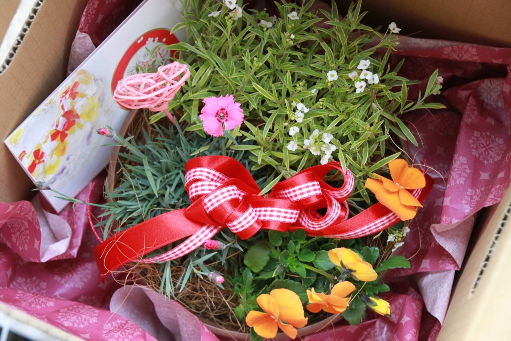 バレンタインにお花の贈り物