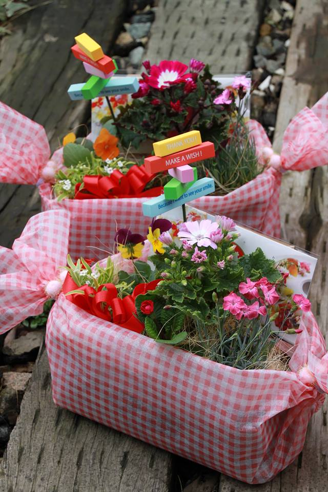 送別会に美食花の寄せ植え