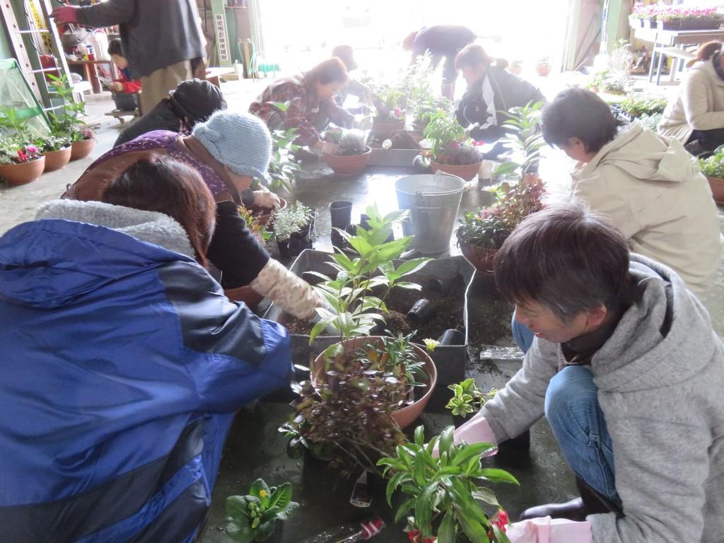 毎年恒例!!山田村の寄せ植え教室♪