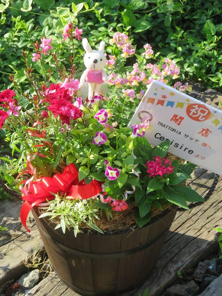 開店のお祝にエディブルフラワーの寄せ植えを♪