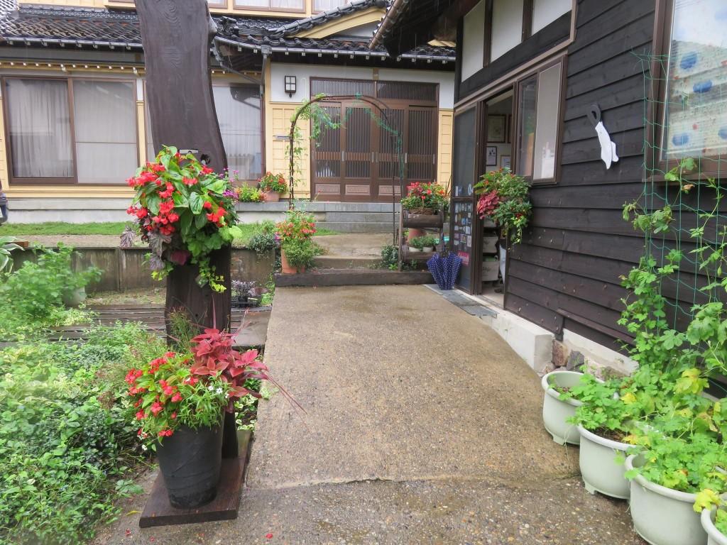 涼しくなってお庭の花色が綺麗です
