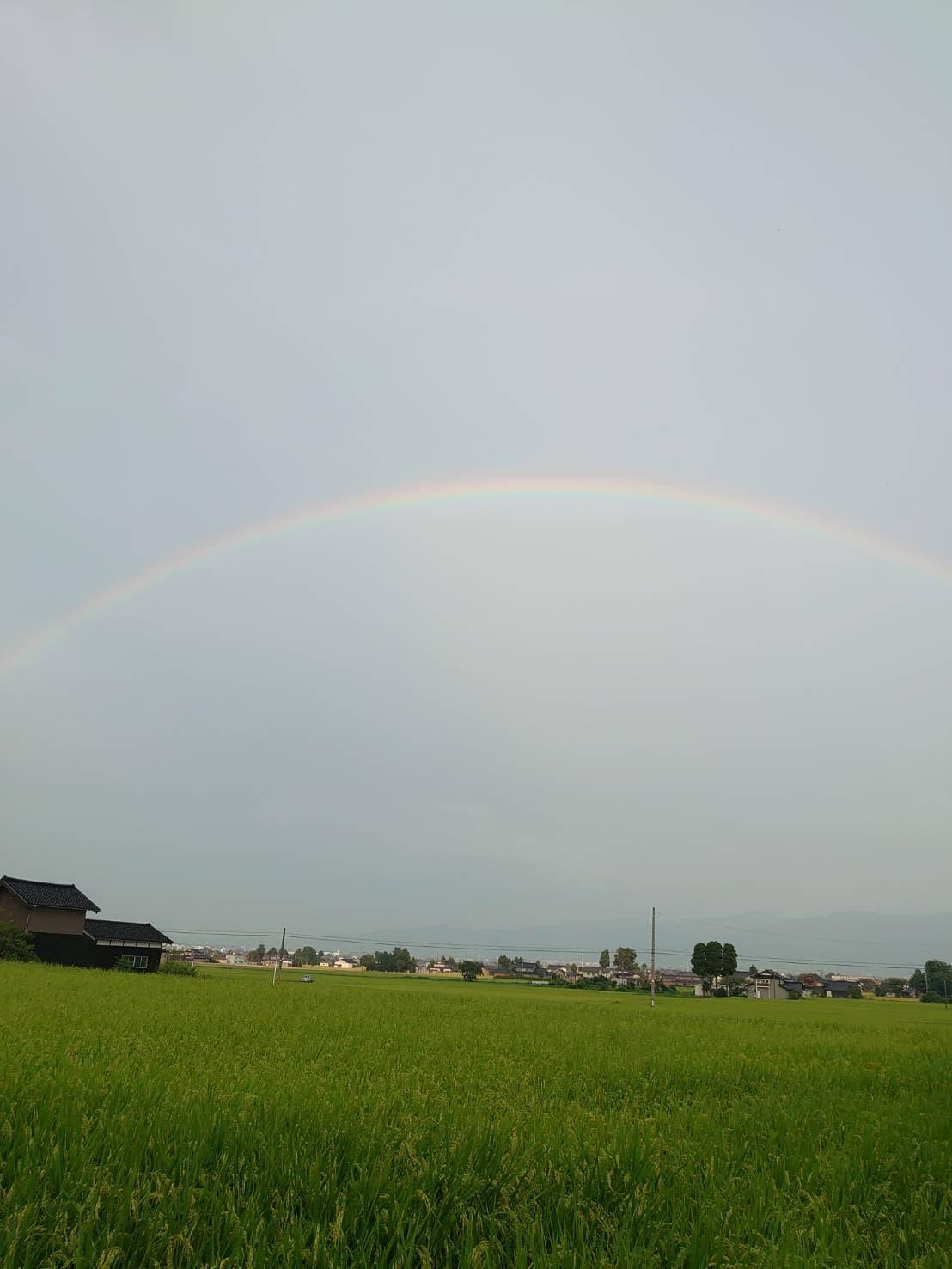 配達中に見た大きな虹🌈