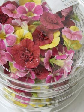 結婚式にお花🌸