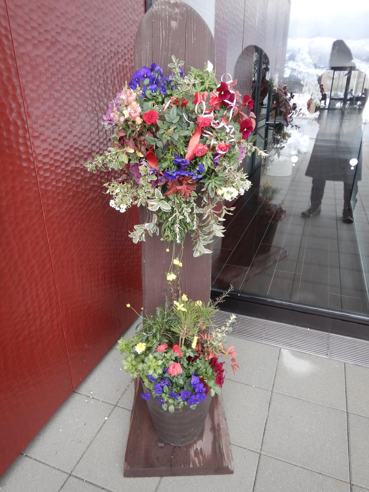 「お花は元気かな??」のお手入れ