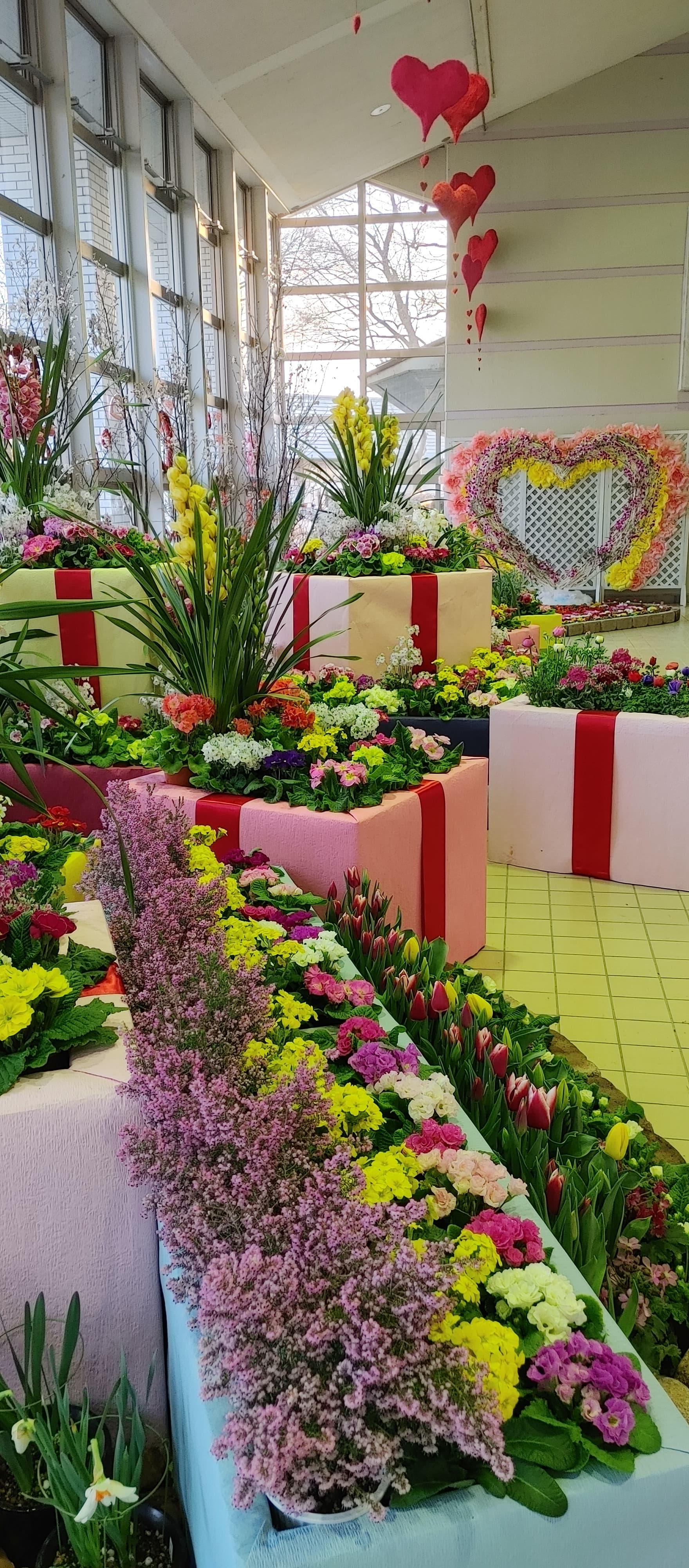 エレガガーデン早春の花まつり